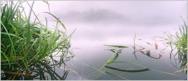 река, утро В тишине речной...photo preview