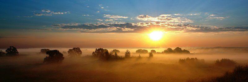 пейзаж, восход, солнце Возвращение солнца, или утро в Российской саванеphoto preview