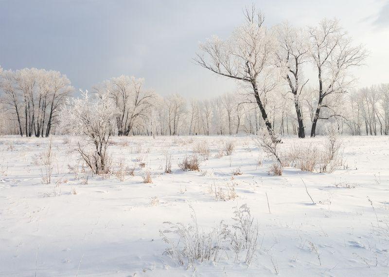 ...Зимний этюд...photo preview