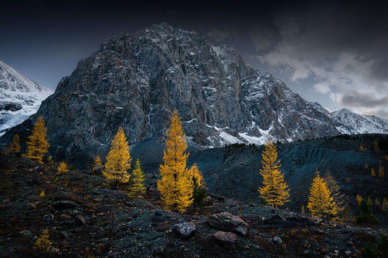 алтай, горы, осень, актру, караташ Караташphoto preview