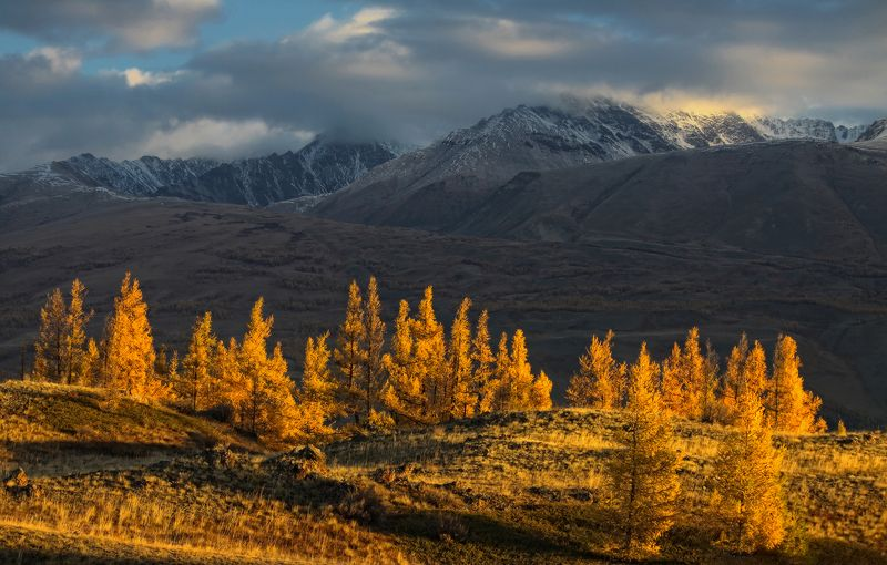 Тёплая осеньphoto preview