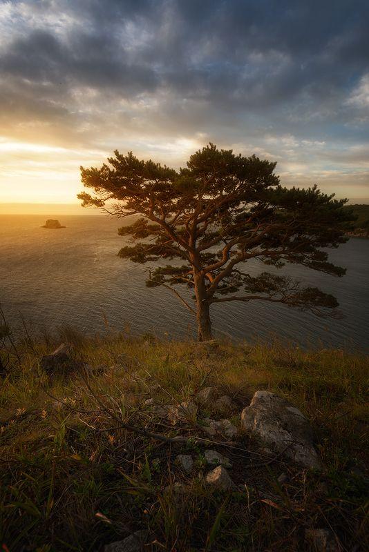 приморский край, заповедник, рассвет, море, солнце Дальневосточные мотивыphoto preview