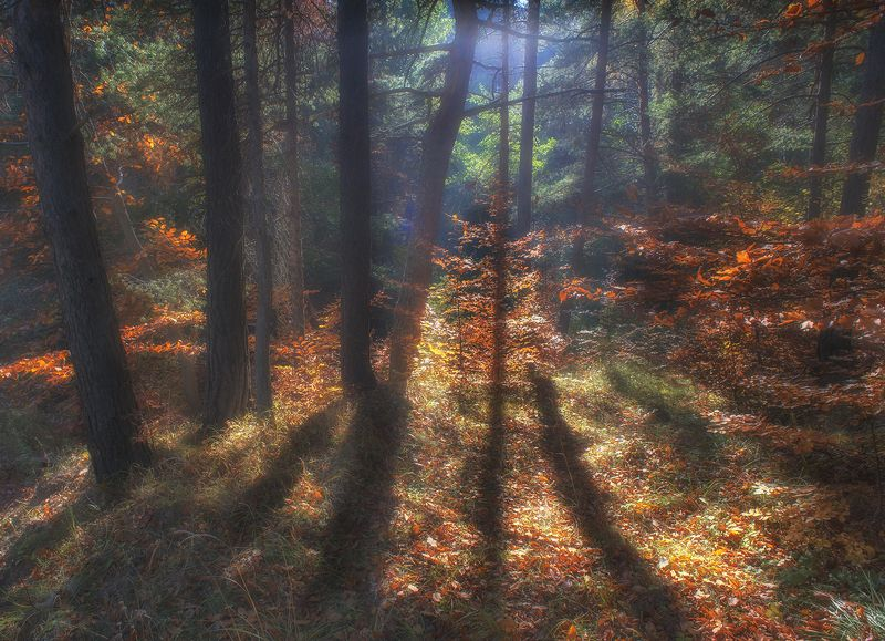 Осень в горахphoto preview