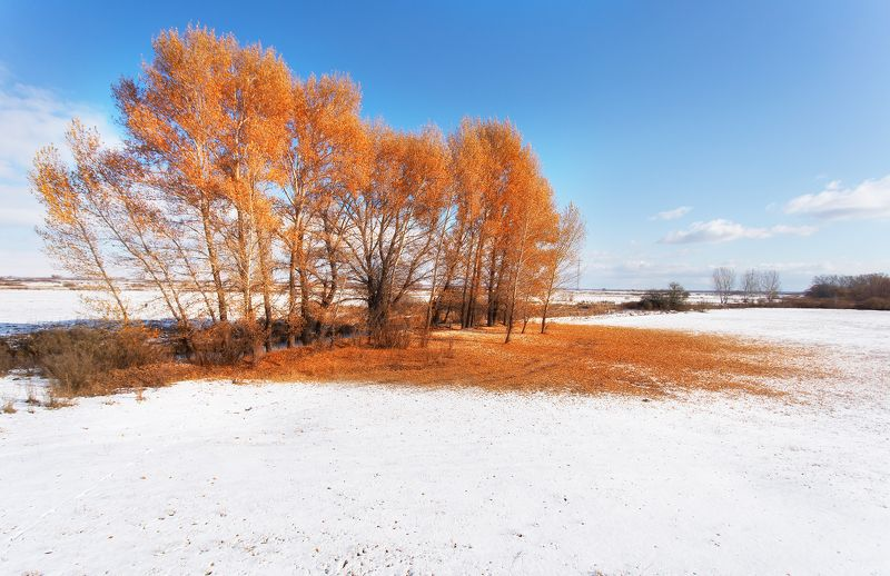 Последний рывок золотой осени photo preview