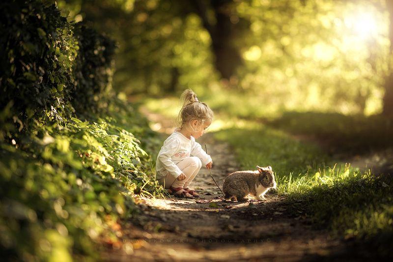 лучшим, другом, best, friend, rabbit, bokeh, path, road, trees, sun, cute, girl, green с лучшим другом..photo preview