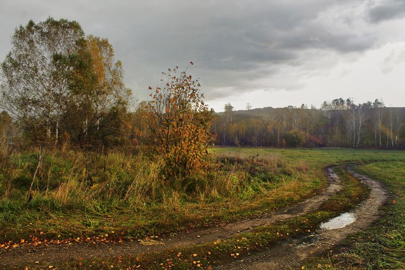 осень, ненастье ...photo preview