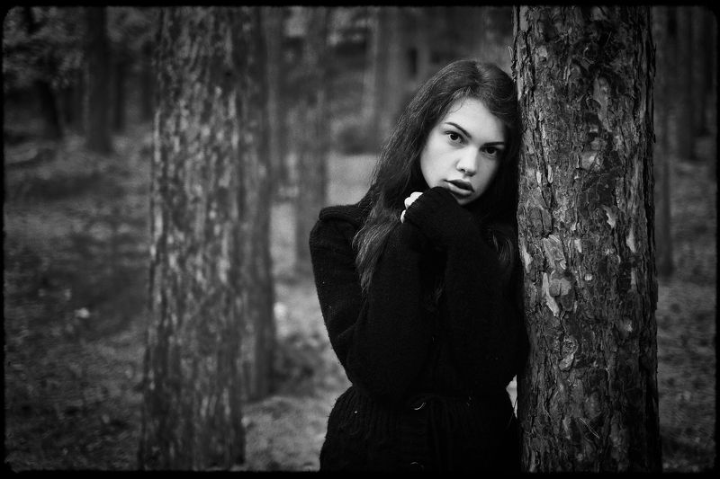 Черно-белая осеньphoto preview