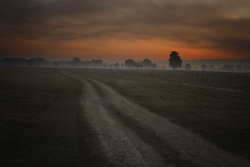 дорога, туман, утро, красное, восход,  Дорога по утрам.photo preview