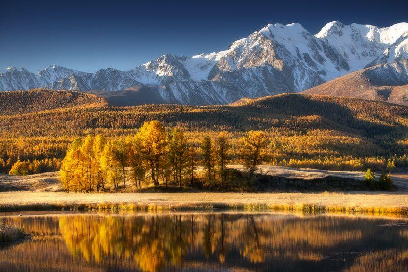 алтай, джангысколь, горы, осень, куркурек Островок осениphoto preview