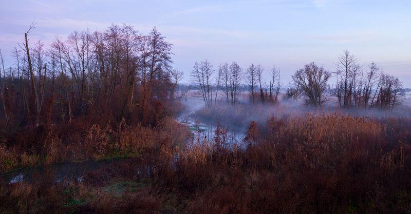 Осенний рассветphoto preview