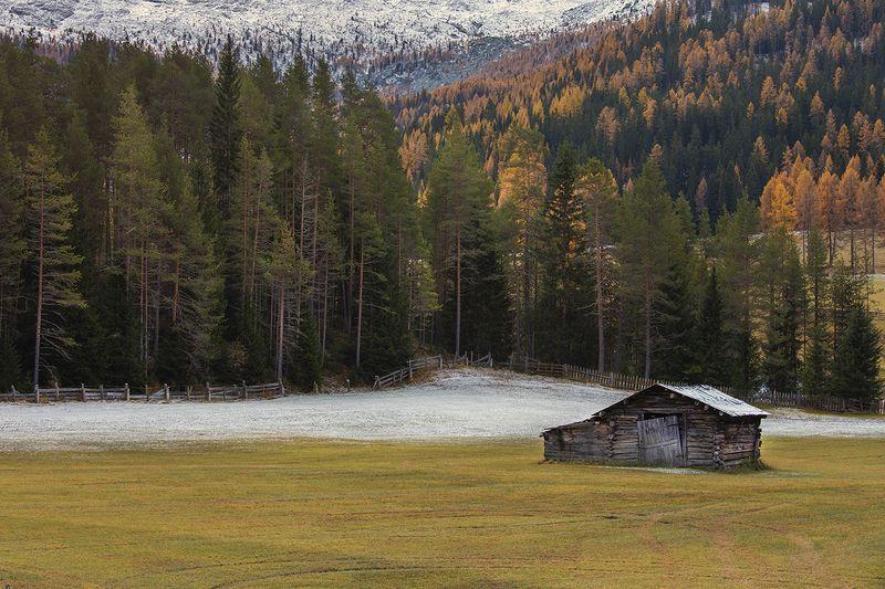 первый альпийский снегphoto preview