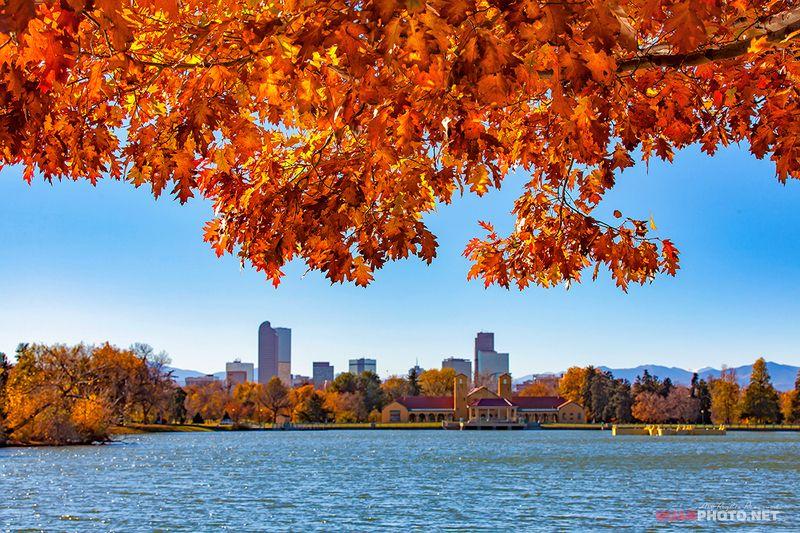 quanphoto, landscape, nature, autumn, fall, lake, city, cityspace, denver, colorado, usa, travel Denver Fallphoto preview
