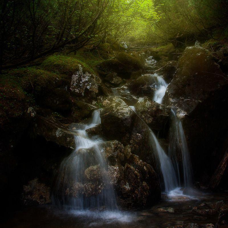 приморский край, солнце, рассвет Таежный ручеекphoto preview
