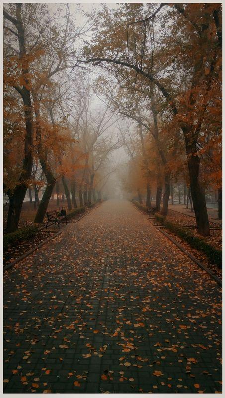 осень, городской парк ********photo preview