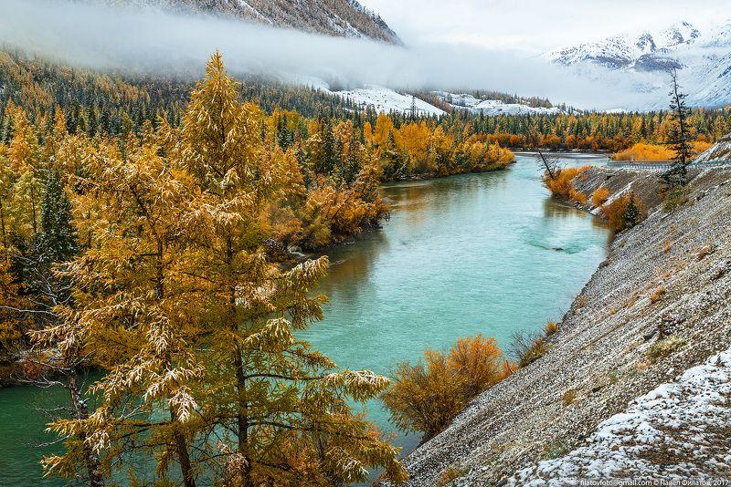 алтай, сибирь, siberia, fall, чуя, altai, снег, осень Осенняя Чуяphoto preview