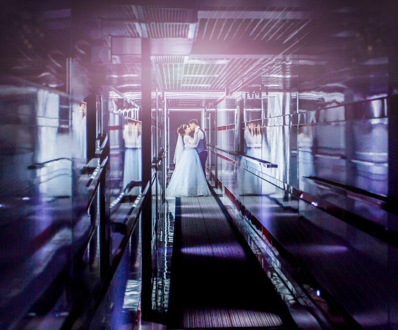 свадьба,любовь,свет neon lovephoto preview