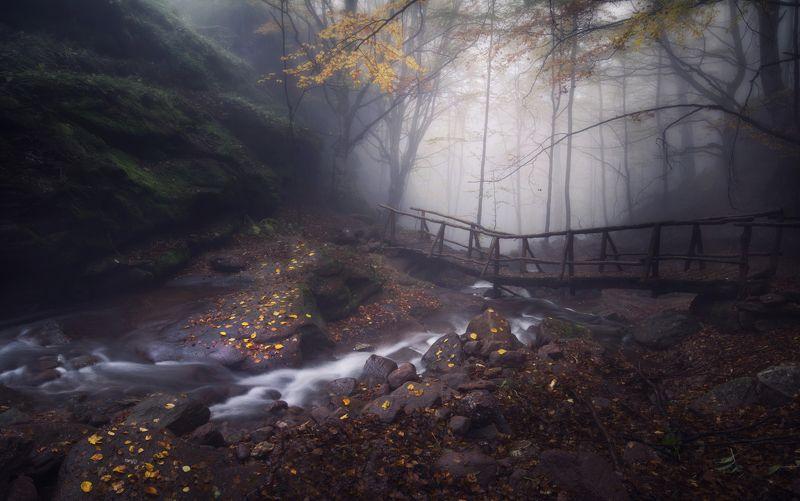 пейзаж, природа, landscape, nature, waterfalls, autumn Autumnphoto preview