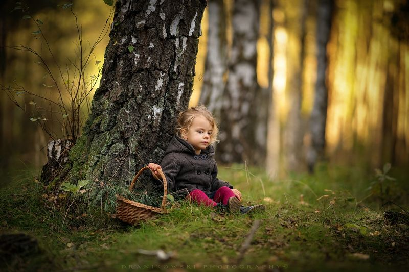 rest, magic, forest, trees, sun, sunset, grass, cute, girl, tree, light Rest in the magic forestphoto preview