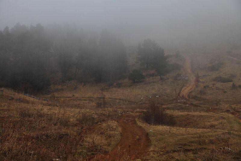 плато, лаго, наки, апшеронский, район, кавказский, заповедник, лагонаки Плато Лаго-Накиphoto preview
