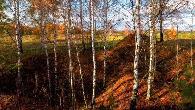 Березки. Осень.photo preview