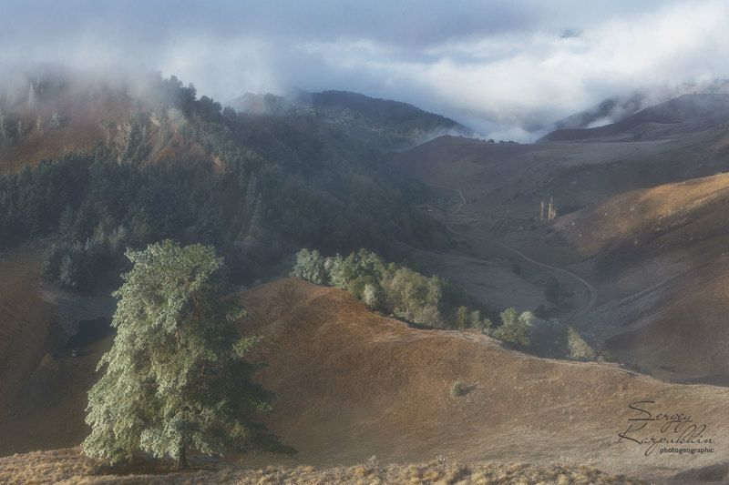 кавказ, ингушетия, заповедник эрзи Посеребрило утро горную долину...photo preview