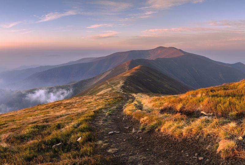 украина, карпаты, горы, боржавский массив, гора стой, гора великий верх Боржавское утроphoto preview