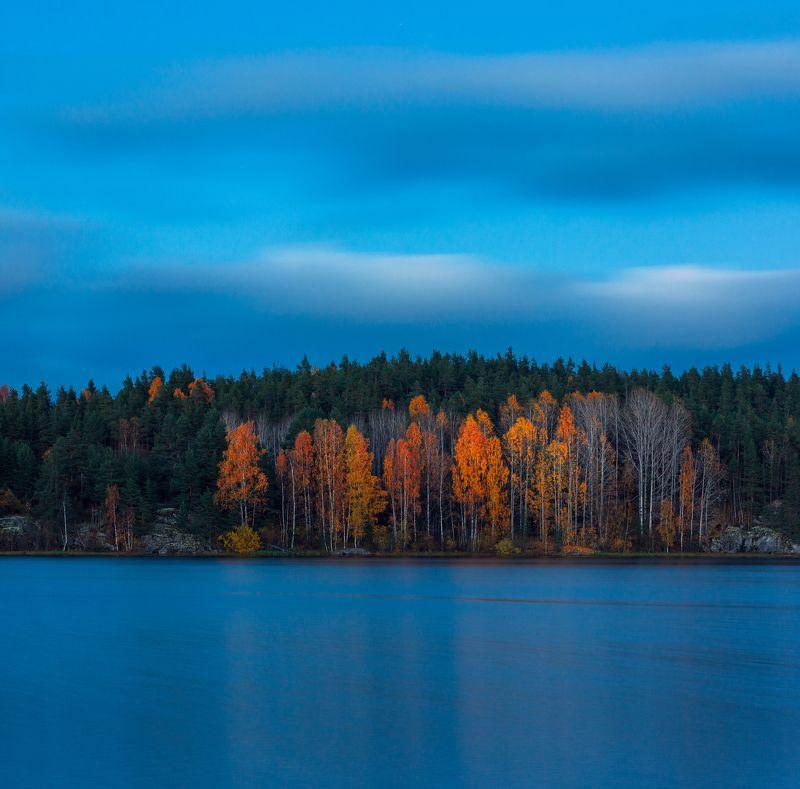 ладога, карелия, сумерки, осень, ладожское озеро золото на синемphoto preview