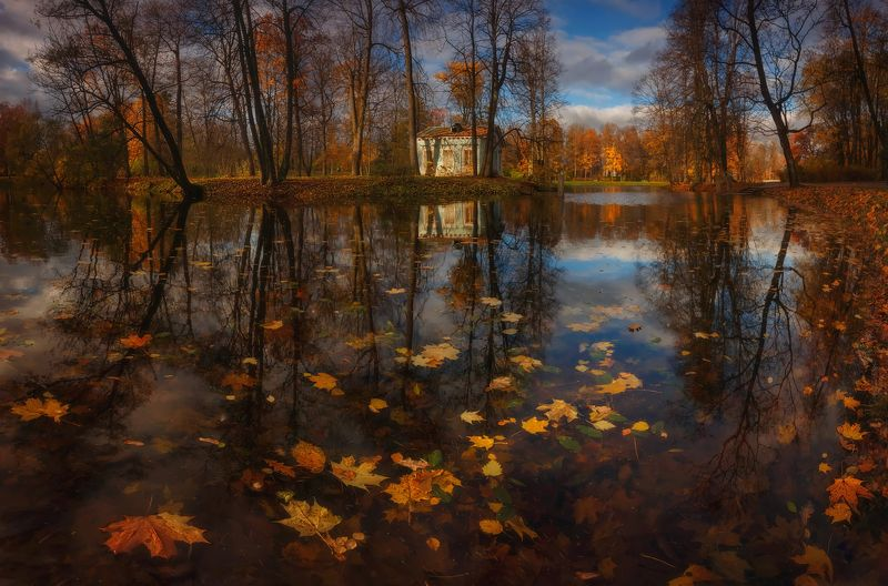 питер, царскоесело,царское,александровский, пушкинг, пейзаж, осень Осень улыбается:)photo preview