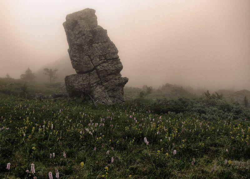 Вдруг выплывает из тумана...photo preview