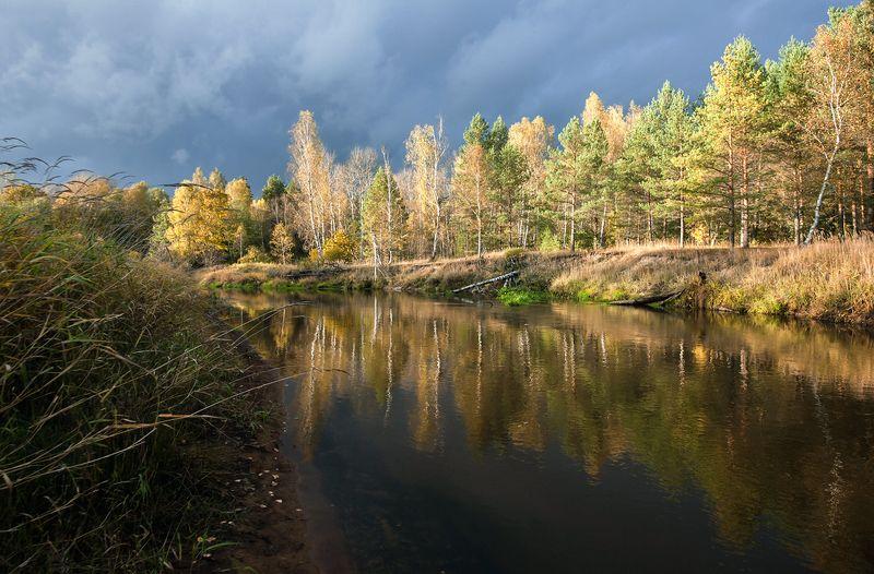 золотая, осень, река, старица, отражения, мещёра, рязанская область Pro осень и её отраженияphoto preview