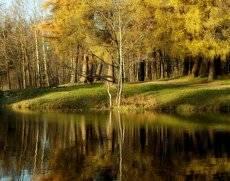 Осенним вечером....