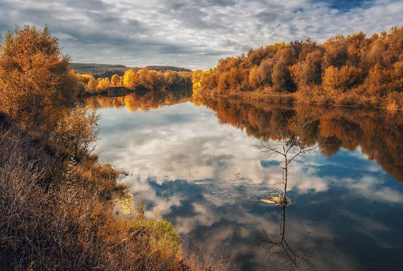 Осенние берега Донцаphoto preview