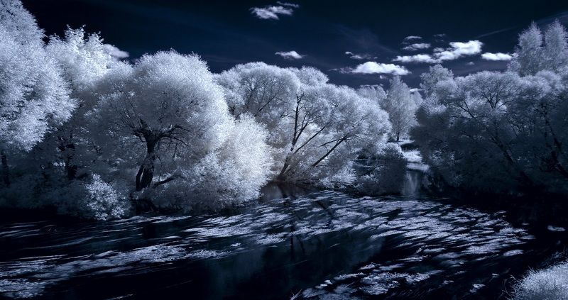 infrared,ик-фото,инфракрасное фото,инфракрасная фотография,пейзаж,природа,беларусь,лето Мгновение жаркого дня. Инфракрасная фотография.photo preview