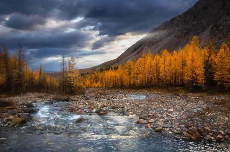 алтай, горы, осень, актру Утром на рекеphoto preview