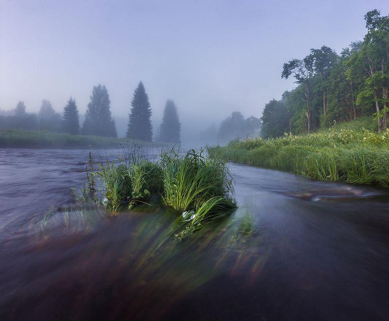 река. лето, туман, выдержка Туманное утроphoto preview