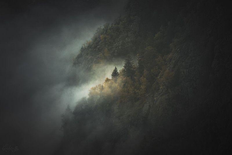 nature, landscapes, nature photography, mountain, forest, national park, trees, tolkien, lord of the rings, blut aus nord, france, pyrenees Ce qui Fut n\'est Plus, Ce qui Sera n\'est Pas, et le Chaos se tut.photo preview