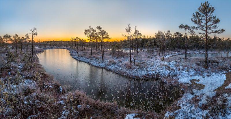 фототур, ленинградская область, деревья, сосна, болото, рассвет, осень, иней, мороз, озеро, снег, заморозки. Иней на рассветеphoto preview
