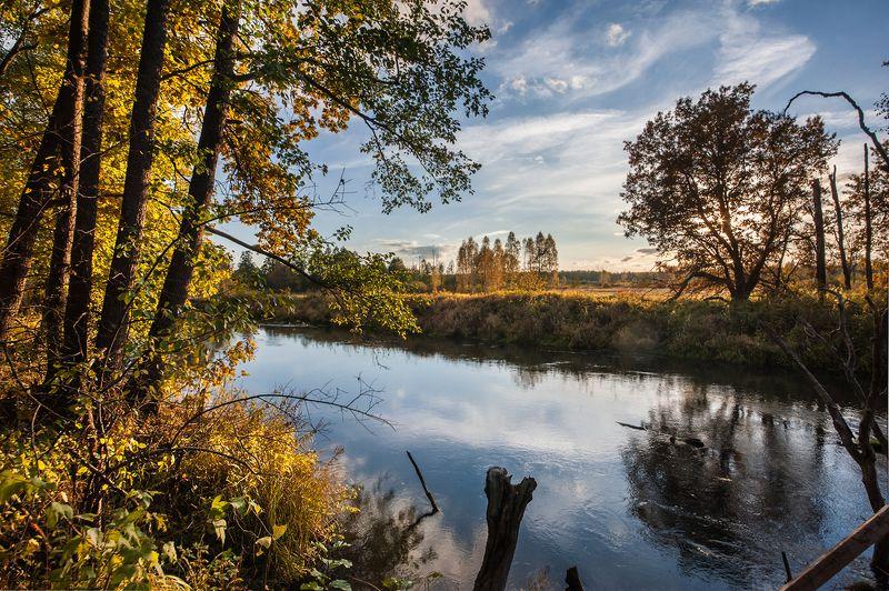 золотая, осень, река, старица, отражения, мещёра, рязанская область Осенний калейдоскопphoto preview