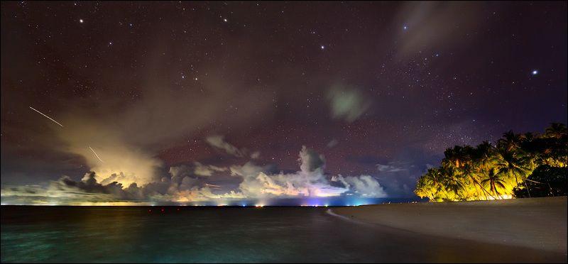 Тропическая ночьphoto preview