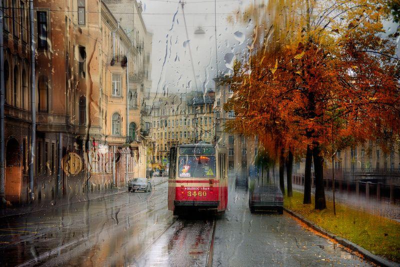 Осенние фотографии...photo preview