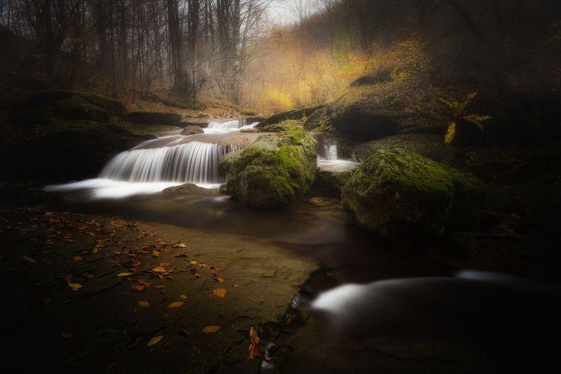 Oсень магияphoto preview