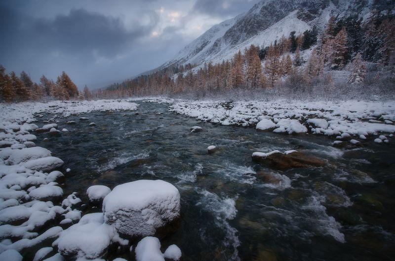 алтай, горы, осень, актру Живаяphoto preview