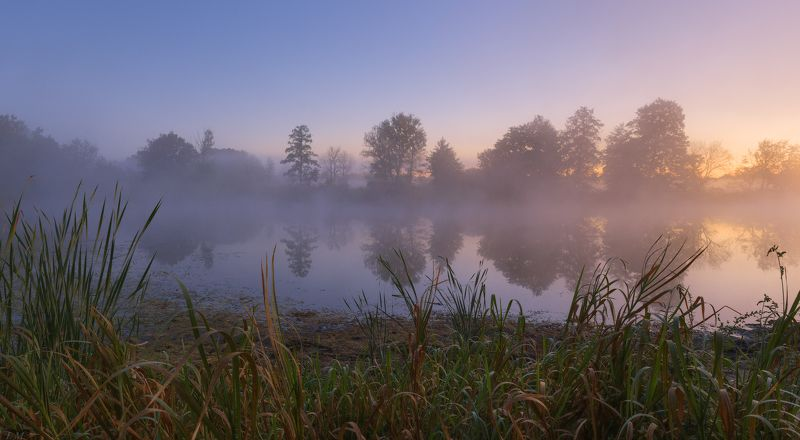 autumn, dawn, fog, forest, lake, morning, panorama, reflection, sunrise, деревья, лес, озеро, осень, отражение, панорама, плавни, рассвет, туман, Утро, trees, Misty, colors, small, foggy dawn \