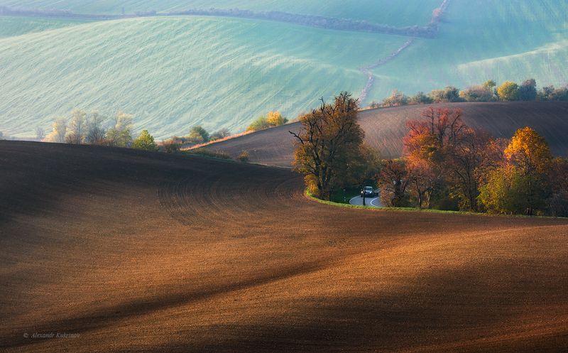 пейзаж, моравия, чехия Про линии и текстуры...photo preview