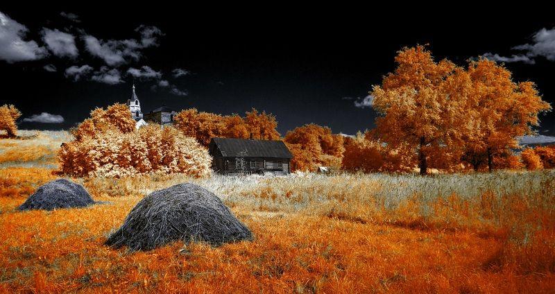 пейзаж, лето, беларусь, природа Летняя сельская. Инфракрасная фотография.photo preview