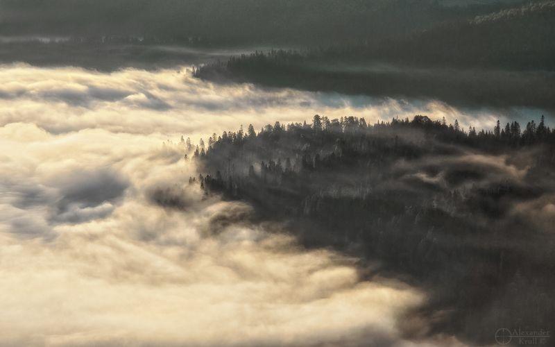 На берегах рассветного тумана...photo preview