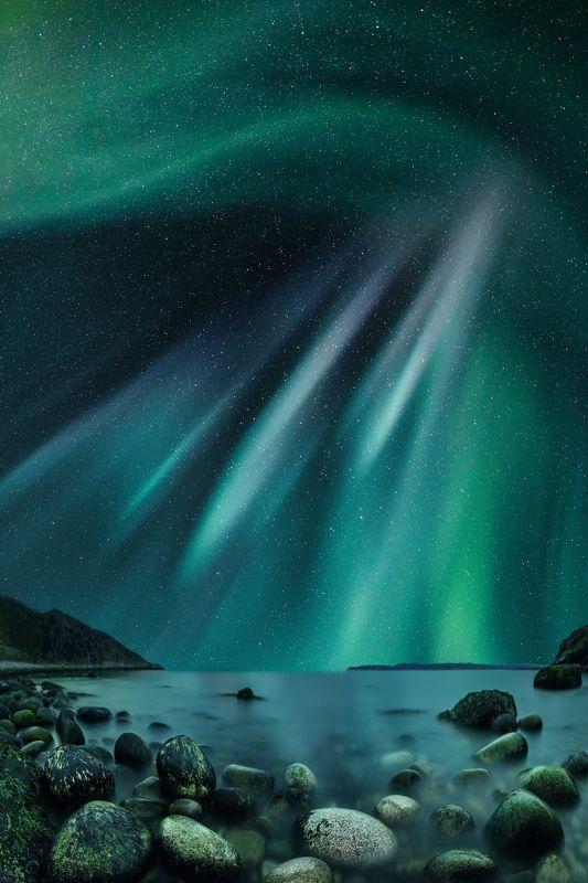 северное сияние, терибирка, мурманская область Звездное сияниеphoto preview