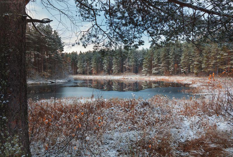 кулой,россия,снег,озеро,холодно,пейзаж,осень,лед,перспектива,лес,деревья Первый снегphoto preview