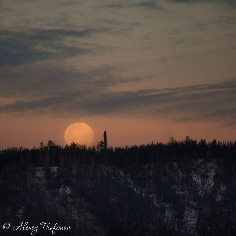 Лунное утроphoto preview