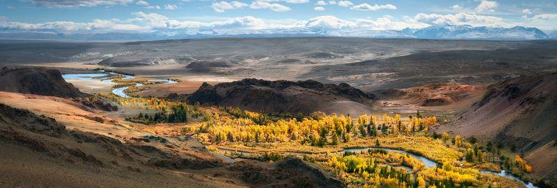 пейзаж, природа, панорама, горы, красная, желтая, золотая, осень, Алтай, Сибирь, холмы, Южно-Чуйский, хребет, река, Чуя, степь, долина, лес, широкий, большой, высокий Панорама с «Красной горки»photo preview